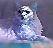 Shadow Kitty by Scott Mitchell