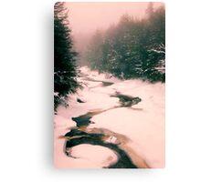Winter Snowy Water Scene Canvas Print