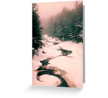 Winter Snowy Water Scene Greeting Card