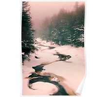 Winter Snowy Water Scene Poster