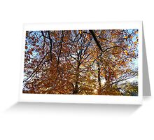 Glowing November Greeting Card