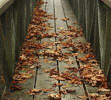 fall bridge by cielleigh