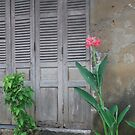 Hoi An Vietnam by Julie Sherlock