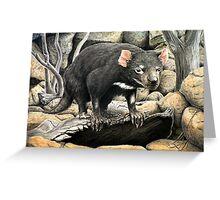 Tasmanian Devil (Sarcophilus harrisii ) Greeting Card