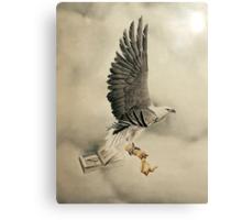 White-bellied Sea-Eagle (Haliaeetus leucogaster) Canvas Print