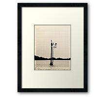 Cormorants on Navagation light Framed Print