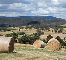 YarraValley Bales by rjpmcmahon