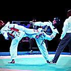 Popart Taekwondo by Matt Eagles