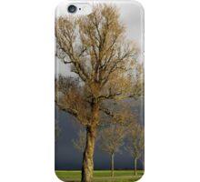 Dark Sky iPhone Case/Skin