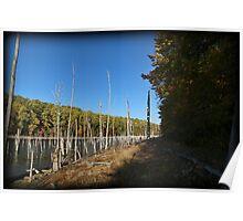 Autumn Merrill Hike Poster