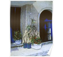 Blue Entrance with Plantings Poster