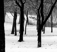 Ghosts of Winter by Krishan Bansal