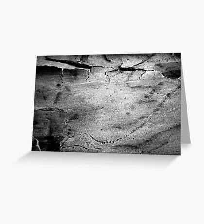 Black & White Abstract Bark # 2 Greeting Card