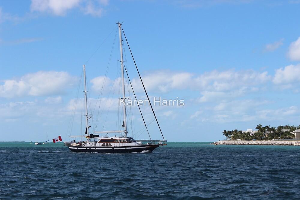 Set Sail by Karen Harris