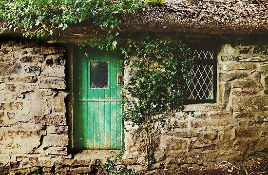 The Quiet Man Cottage by Denise Abé