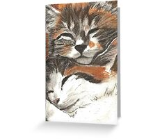 Kitty Cuddles Greeting Card