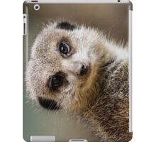 Ipad case - meercat 1 iPad Case/Skin