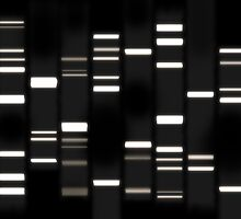DNA Art White on Black by ArtPrints
