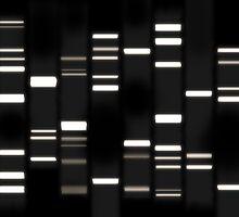 DNA Art White on Black by Michael Tompsett
