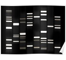 DNA Art White on Black Poster