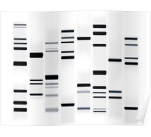 DNA Art Black on White Poster