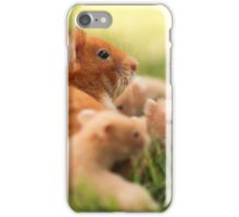 Golden hamster with her young litter on the lawn iPhone Case/Skin
