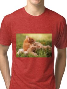 Golden hamster with her young litter on the lawn Tri-blend T-Shirt