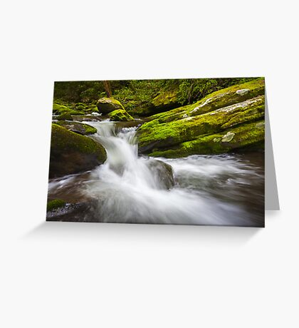 Roaring Fork Great Smoky Mountains National Park Cascade - Gatlinburg TN Greeting Card
