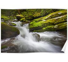 Roaring Fork Great Smoky Mountains National Park Cascade - Gatlinburg TN Poster