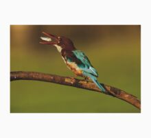 White-throated kingfisher with a fish in its beak One Piece - Short Sleeve