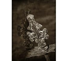Old Grave Site ; Cast iron feature Photographic Print