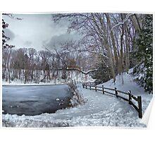 Pondering Winter Poster