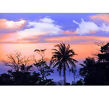 tropical 7 Photographic Print