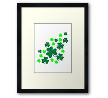 Green shamrocks Framed Print