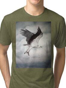 White-bellied Sea-Eagle (Haliaeetus leucogaster) 2 Tri-blend T-Shirt