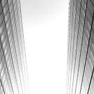 The Gap by Steven Powell