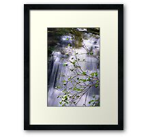 New Blossoms at Huron Falls in HDR Framed Print