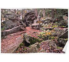Autumn Leaves Carpet the Midway Crevasse Poster