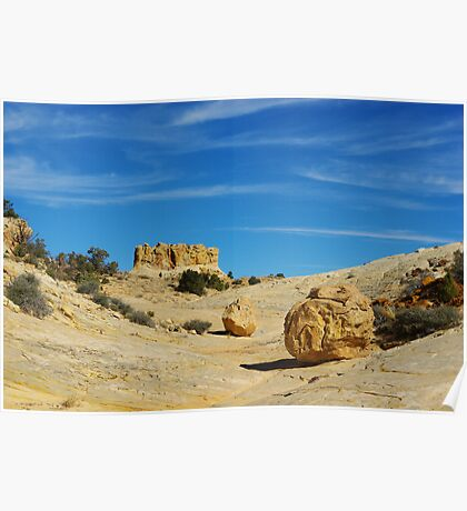 Beautiful rock boulder in a canyon Poster