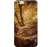 Lost Maples State Natural Area iPhone Case/Skin