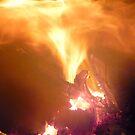 Fire by Jess Meacham