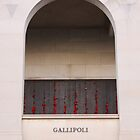 Gallipoli by Kaye Stewart