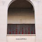 Gallipoli by Kaye Stewart
