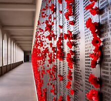 Lest We Forget by Kaye Stewart