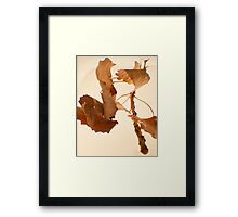 Orange Leaves -Fall Foliage Series Framed Print