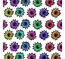 Colorful Hand Painted Flowers Photographic Print