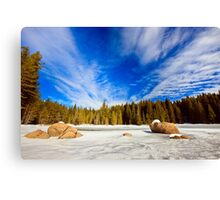 beauty of winter sky Canvas Print