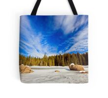 beauty of winter sky Tote Bag