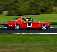 Harry Bargwanna 1964 Ford Mustang - Group Nc  by Steven Weeks