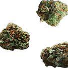 420 Buds #61 by sensameleon